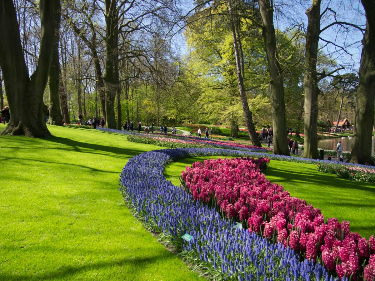 One Day Trip To Keukenhof: The Most Beautiful Garden In The World